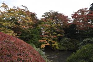 紅葉の逍遥園