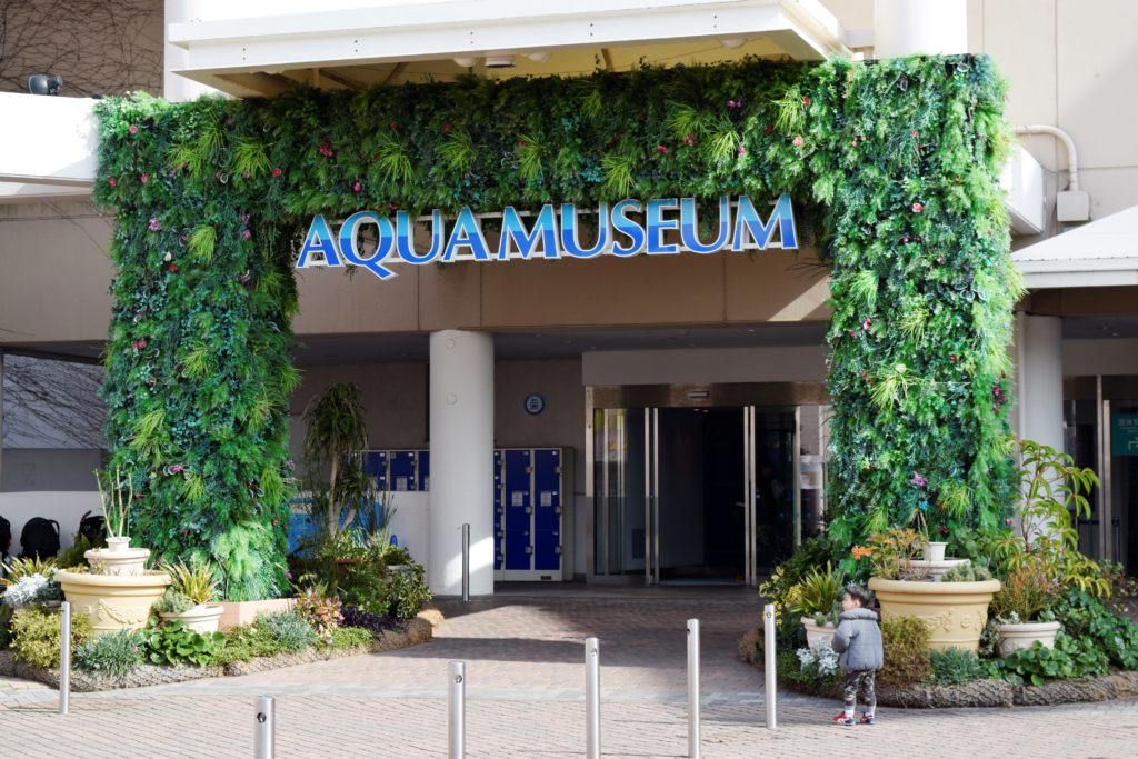アクアミュージアム入り口